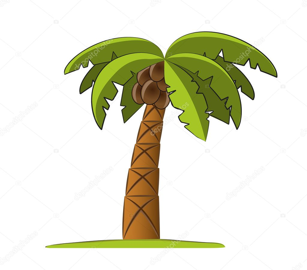 Palm tree vector illustration — Stock Vector #2722530