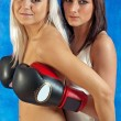 Young sexy girls in boxing gloves — Stock Photo #3257300