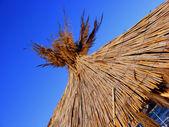 Close-up photo of rattan umbrella — Stock Photo
