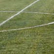 Stock Photo: Football grass
