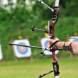 Sport bow - Stock Photo