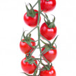 Fresh cherry tomatoes — Stock Photo #2728905