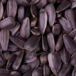 Stock Photo: Closeup of sunflower kernels