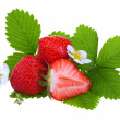 Fresh strawberry — Stock Photo #3380540