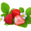 Fresh ripe strawberry — Stock Photo #3380590