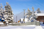 Winter day in the village — Stock Photo