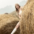 Young sexy woman among the straw. — Foto de Stock