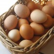 Egg — Stock Photo #3361098
