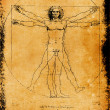 Stock Photo: Photo of the Vitruvian Man