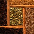 Indian spice — Stock Photo