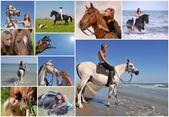 Dívka na koni — Stock fotografie