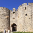 Stock Photo: Door of Aigues Mortes