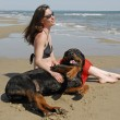 Girl and rottweiler — Stockfoto