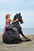 Sitting horse on the beach — Stock Photo