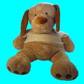 Toy Doggy — Stock Photo
