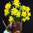 Stock Photo: Daffodils for Easter