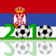 Soccer 2010 Serbia — Stock Photo