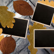 Photo frames over autumn leaves background — Stock Photo #3411402