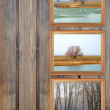 Photo frames over pannel wood background — Stock Photo