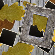 Photo frames over autumn leaves background — Stock Photo