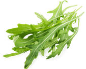 Rucola — Stock Photo
