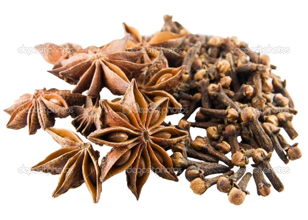 Anise stars and cloves on white background — Stock Photo #2918968