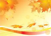 Folhas de outono de maple — Vetorial Stock