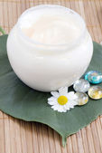 Chamomile and face cream - natural body-care — Stock Photo