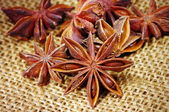 Heap of badyan seeds — Stock Photo