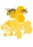 Honeycombs — Stock Vector