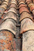 Roofing tiles — Stockfoto
