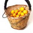 Stock Photo: Loquat basket