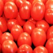 Fresh Tomatoes — Stock Photo #3477810