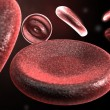 Red Blood Cells — Stock Photo #3568301
