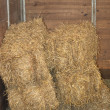 Hay Bales in a Barn — Stock Photo #2892871