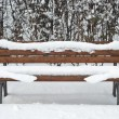 Bench in the Snow — Stock Photo #3218443