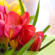Colorful freesias - Foto Stock