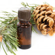 Bottle of fir tree oil - Stock Photo