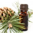 Bottle of fir tree oil — Stock Photo