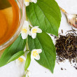 Green tea and jasmine — Foto Stock