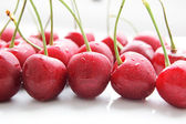 Red cherry row — Stock Photo