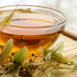 Cup of tea from dry lime-tree — Stock Photo
