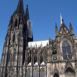 Cologne — Stock Photo