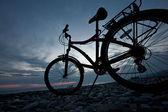 Bicycle life — Stock Photo