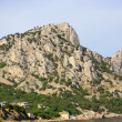 Stock Photo: Mountain Cat, Simeiz, Crimea, Ukraine, 21 June 2010.