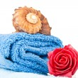 Stock Photo: Folded blue towel