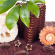 Aromatic decoration - Foto Stock