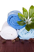 Towels decorated with beans and plant — Stock Photo