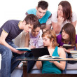 Foto Stock: Students studying together home