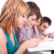 Young student studying with her friends - Stock Photo